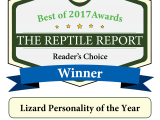 A Award won by Krayee chamz